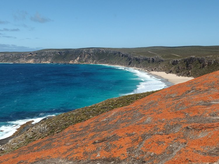 view of kangaroo island beach, australia