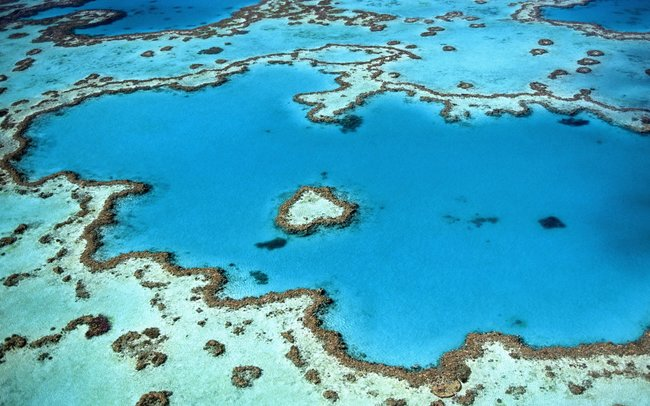blue great barrier reef aeriel view