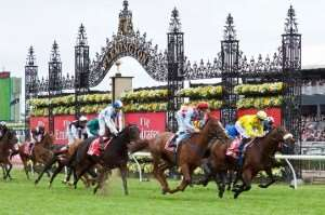 Melbourne Cup Carnival horseracing events Melbourne escorted tours Distant Journeys