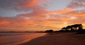 Apollo Bay Great Ocean Road tours Victoria Australia Distant Journeys