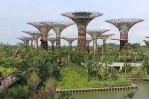 Gardens by the Bay Singapore Asian city stopover Australia and New Zealand tours Distant Journeys