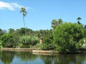 Royal Botanical Gardens Australia visit on Sydney holiday tours with Distant Journeys