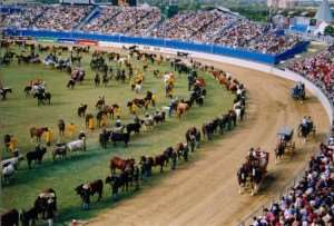 Sydney Royal Easter Show, annual event enjoyed on our Australia escorted tours