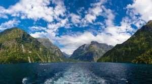 Cruising through Milford Sound on a Distant Journeys Tour