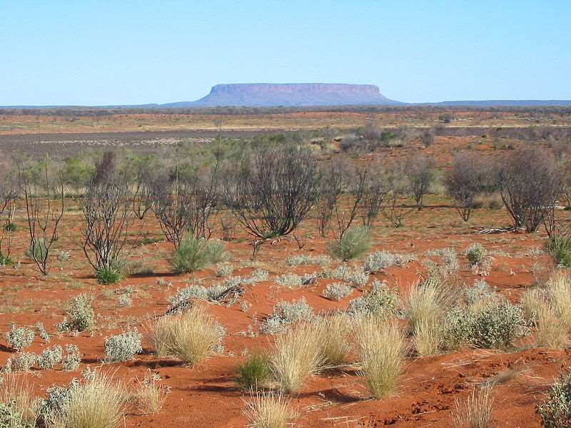 Queensland outback where the fossils were found, can be seen on our holidays to Australia