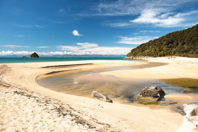 Golden sands on Abel Tasman National Park beach