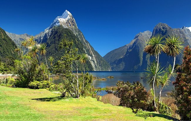 Milford sound view New Zealand
