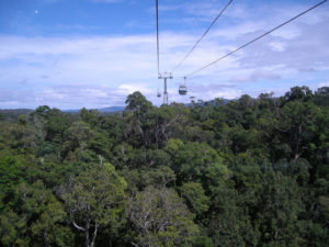 cablecar above rainforest skyrail Kuranda Australia