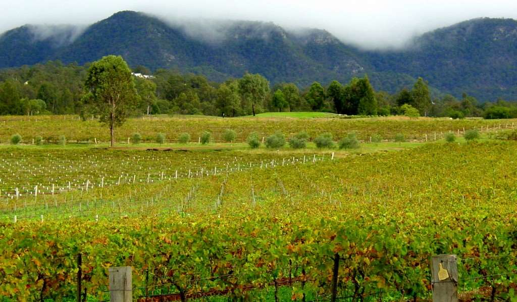 Australia voted number one for food and wine, experience it on Distant Journeys Australia holiday packages