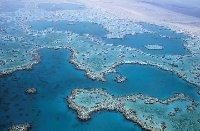 Great Barrier Reef as seen from Distant Journeys Great Barrier Reef holidays