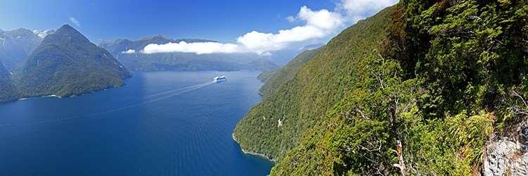 Cruise through Milford Sound on our Australia New Zealand tours