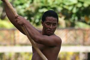 Maori Rower