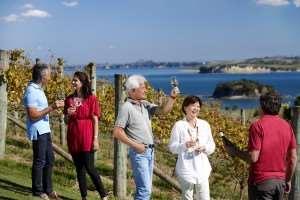 New Zealand wine tasting