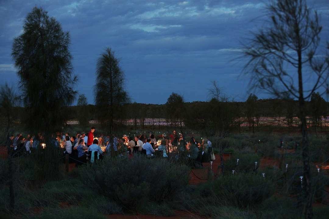 A Night at Field of Light 2