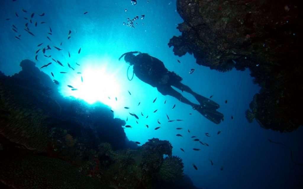 CNS diver-silhouette