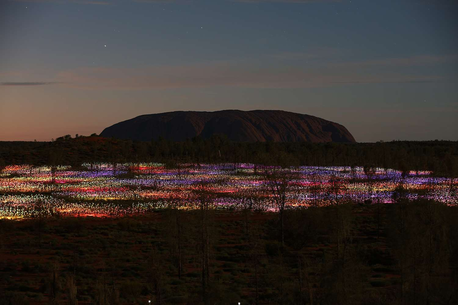 Field of Light Uluru