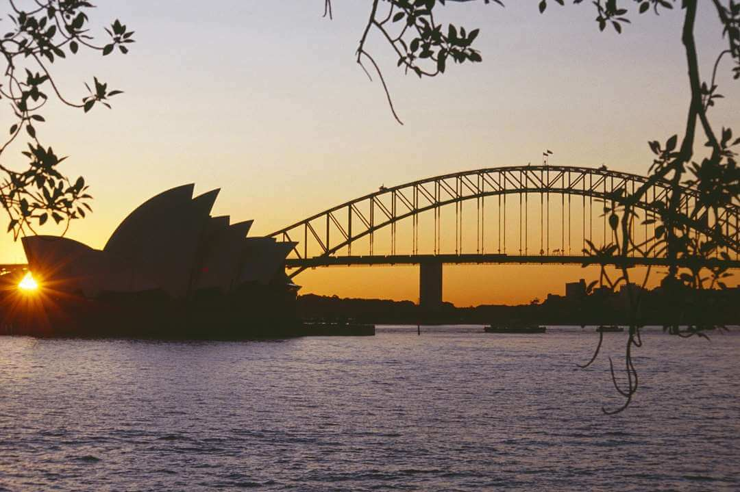 SYD Harbour Sunset