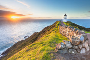bay-of-islands-cape-reinga-day-excursion