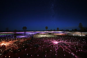 field-of-light-uluru-stars