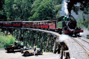 puffing-billy-melbourne