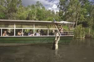 HCA Boat Pole Feeding a Crocodile