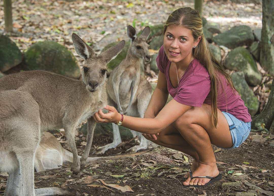 HCA Kangaroo pat