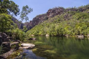 Kakadu river and landscape