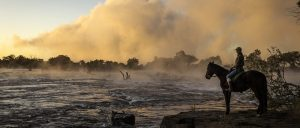 Victoria Falls Horse Safari