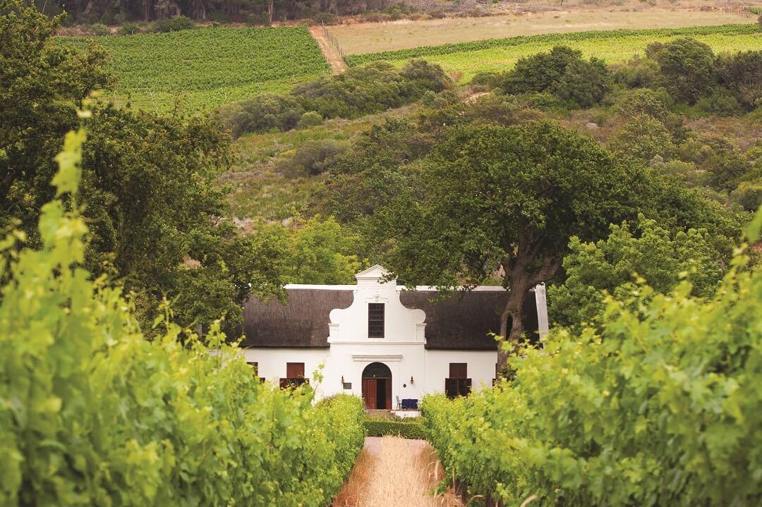 Winelands 2