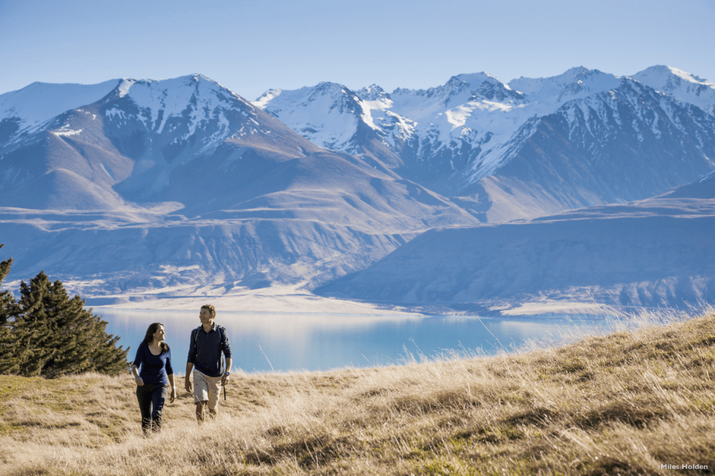 reasons to visit new zealand