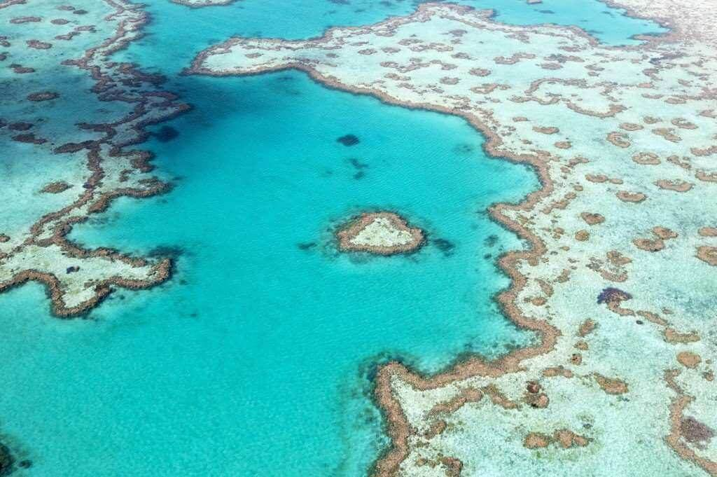 birds eye view great barrier reef australia