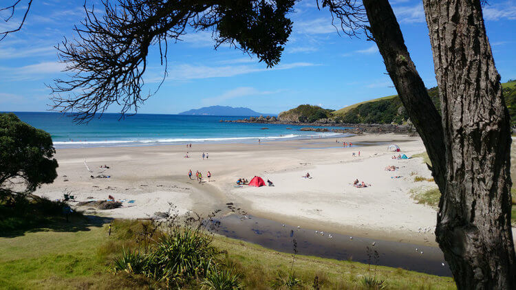 beach in new zealand