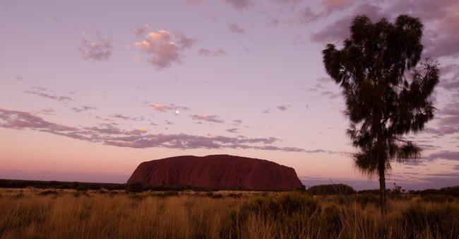 Uluru viewing area at sunrise