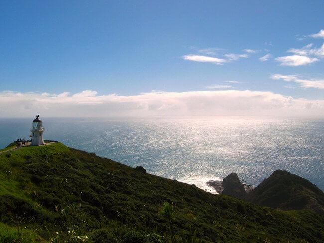 coastal view Cape Regina New Zealand