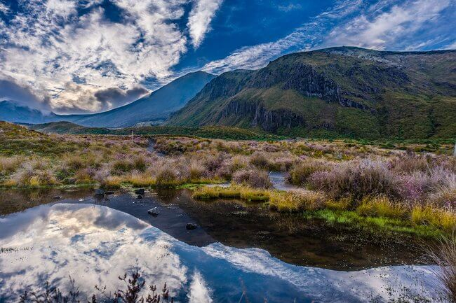 Tongariro national park landscape with mount doom new zealand