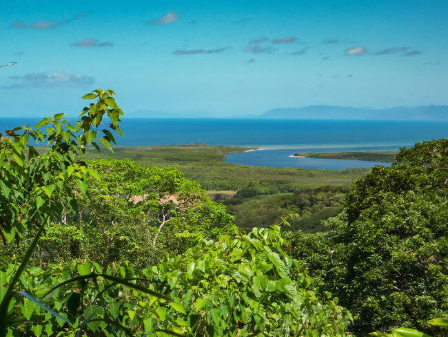 coastal view from tree tops daintree rainforest Australia
