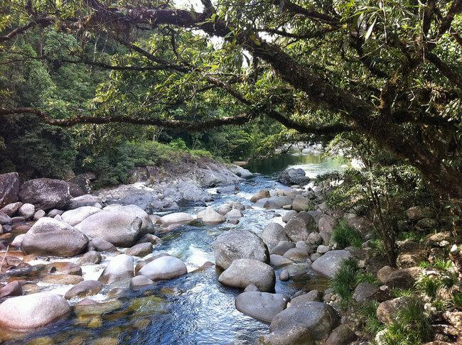 rocks in river daintree rainforest australia
