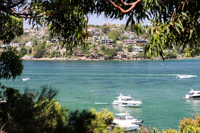 the spit t manly walk water and trees Sydney Australia