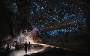 couple in dark cave glow worm sky New Zealand