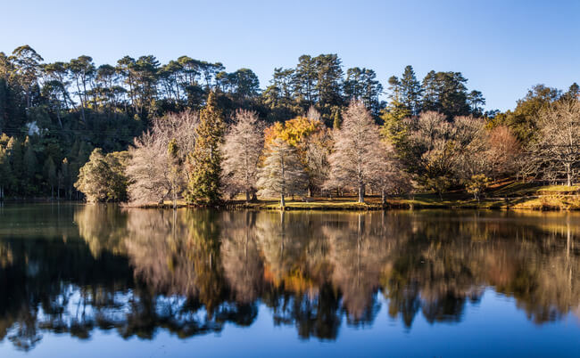 lake mclaren view with autumnal trees reflection