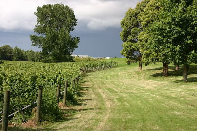 villa maria winery new zealand