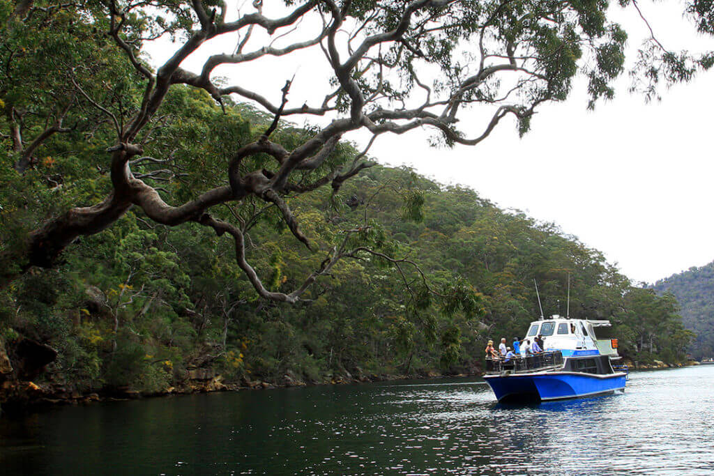 kuringai-national-park-sydney