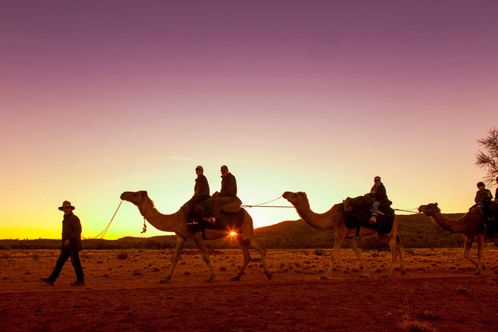 sunset-camel-tour-alice-springs-australia