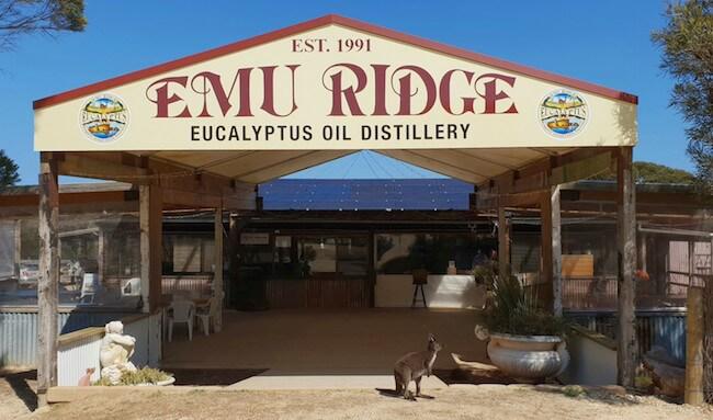 emu ridge eucaliptus oil distillery