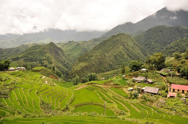 sapa rice fields north vietnam