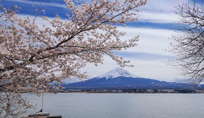 lake kawaguchiko japan