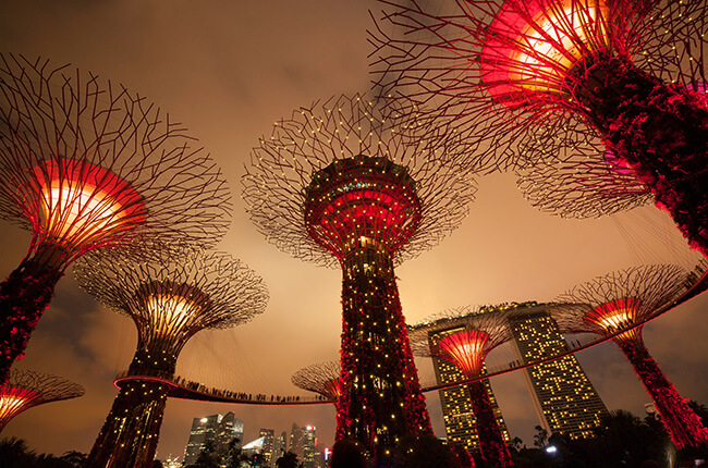 Looking up at the Gardens by the Bay tree structures lit up in deep reds, and a dark, cloud-covered sky