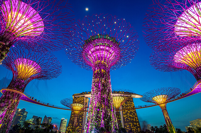 Photo looking up at the Gardens By The Bay light show in Singapore at night, vibrant pinks and purples paired with deep blues of the night sky