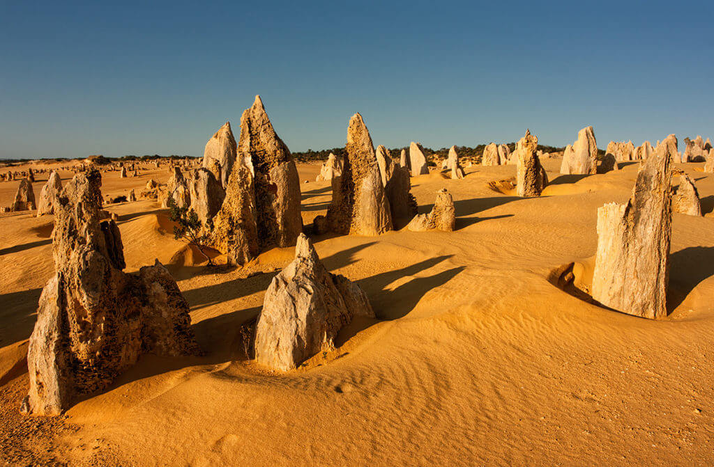Jagged rocks of the Pinnacles in Perth, with sand dunes weathered away around the rocks