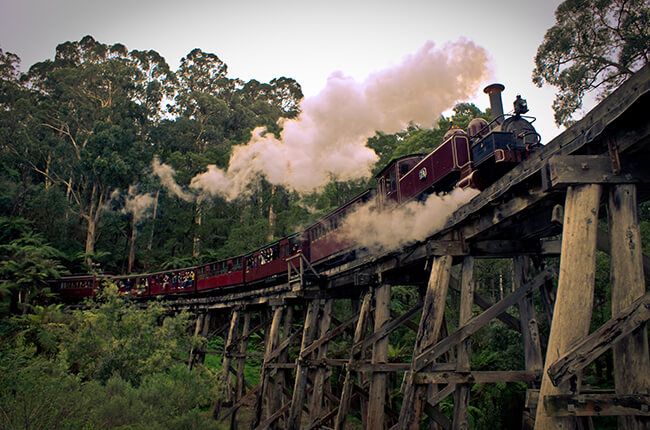 Puffing billy suspended on an old bridge with tourists hanging out of the side taking photos - surrounded by steam and dense forest